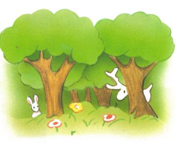 forêt 2